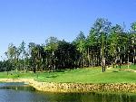 golf golf  6 jpg