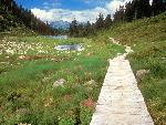 velo Bagley Lakes Trail Mount Baker Wilderness Washington jpg