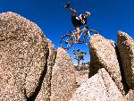velo Balance on Red Rock Gap Yucca Valley California jpg