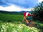 velo bike  6 jpg