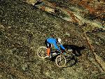 velo bike 11 jpg
