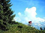 velo bike 13 jpg