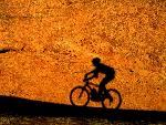 velo bike 16 jpg
