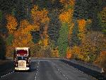 Camion Camion1 8  jpg