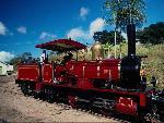 Train Train43 1 24 jpg