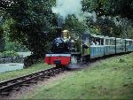 Train Train44 8  jpg