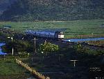 Train Train73 1 24 jpg