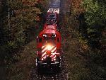 Train Train77 8  jpg