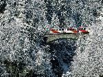Train trains   jpg