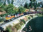 Train trains  5 jpg