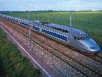 Train trains 31 jpg