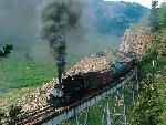 Train trains 42 jpg