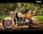 moto yamaha yamaha moto 61 jpg