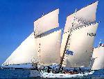 voiliers sailinig boats   jpg